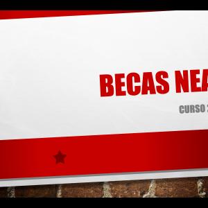 Becas Alumnado NEAE